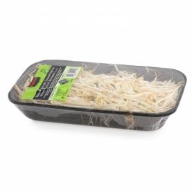 Brotes de soja verde Fanya 200 g