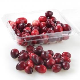 Arandanos rojos Carrefour tarrina 125 g