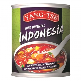 Sopa indonesia con fideos, pollo, verudras Yang Tse 400 ml.