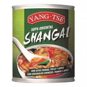 Sopa shangai con setas chinas, pollo, arroz Yang Tse 400 ml.