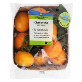 Clementina con hoja Calidad y Origen 1 kg