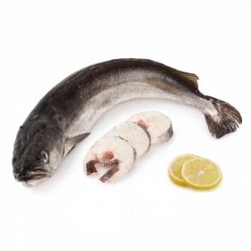 Pescadilla de pincho 1,5 Kg aprox