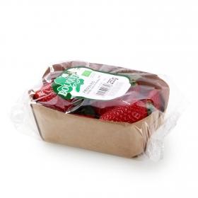 Fresa ecológica tarrina 250 g