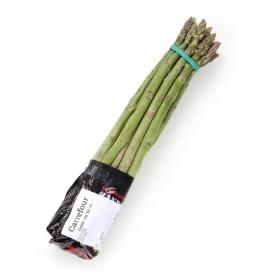 Espárrago Verde Premium granel 500 g aprox