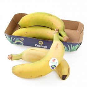 Plátano de Canarias Coplaca bandeja 5 uds