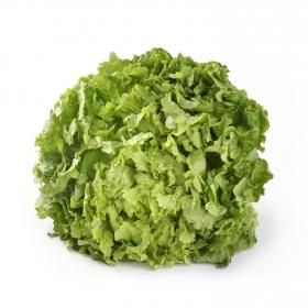 Lechuga batavia verde  1 ud