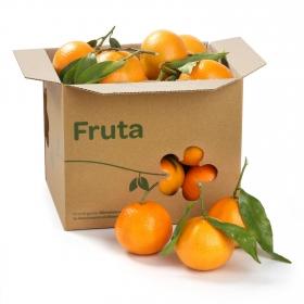 Mandarina con hoja Carrefour 500 g aprox