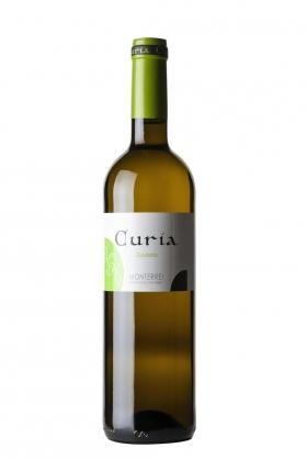 Curia Blanco 2019
