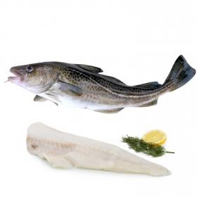 Bacalao de lonja 1,5 Kg aprox