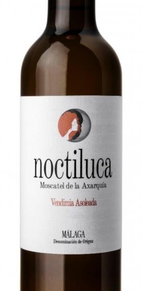 Noctiluca Blanco 2019