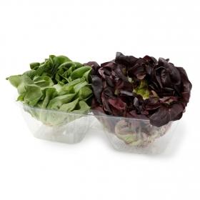 Lechuga salanova mix  2 pz 400 g