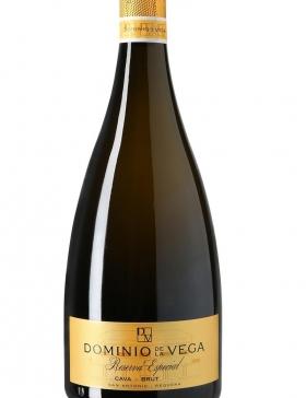 Dominio De La Vega Reserva Especial 2015