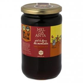 Miel de flores de montaña Anta 800 g.