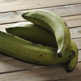 Plátano de freir