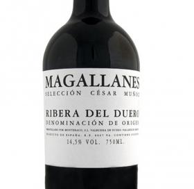 Magallanes Tinto 2014