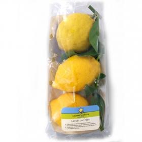 Limon con hoja Calidad y Origen Carrefour 500 g aprox