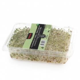Brotes de alfalfa Fanya bandeja 100 g