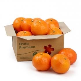 Mandarina Granel Premium 1 Kg aprox