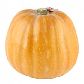 Calabaza halloween ud
