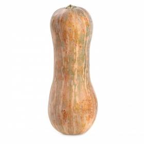 Calabaza del país  1,5 Kg