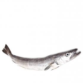 Pescadilla Pieza de 1-2 kg 500 gr aprox