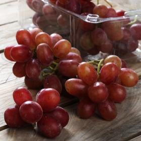 Uva roja sin pepitas