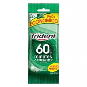 Chicles sabor hierbabuena 60 minutos Triden 3 paquetes de 20 ud.
