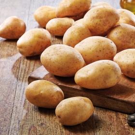 Patata lavada a granel