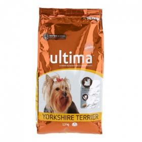 Alimento Perro Seco Adulto Yorkshire