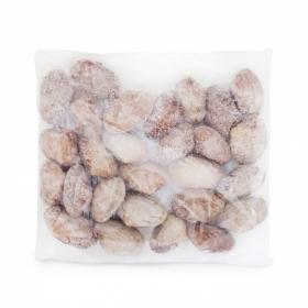 Almeja japonesa