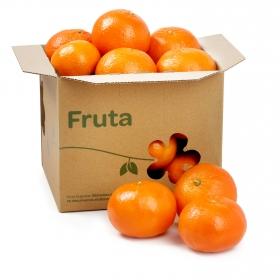 Mandarina Marca Selecta Carrefour Granel Bolsa 1 Kg