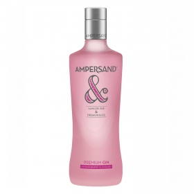 Ginebra Ampersand premium strawberry 70 cl.