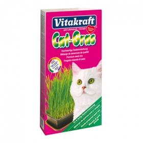 Hierba para Gato Vitakraft