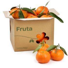 Mandarina C/Hoja Selecta Carrefour Granel Bolsa 1 Kg