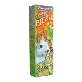 Bizcochos conejos enanos manzana