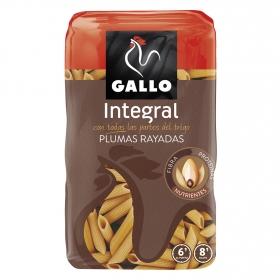 Macarrones rayados integrales Gallo 500 g.
