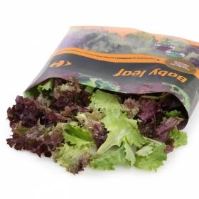 Ensalada Baby Leaf Carrefour bolsa 70 g