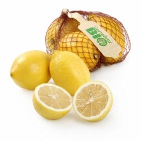 Limón Ecológico Carrefour Bio Malla 500 grs
