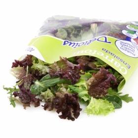 Ensalada brotes tiernos delicius Carrefour bolsa 100 g