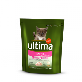 Alimento Gato Seco Junior