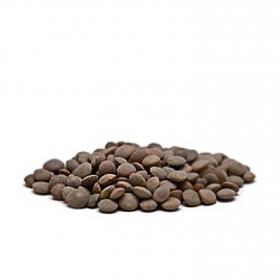 Lenteja Pardina Premium granel 1 Kg aprox