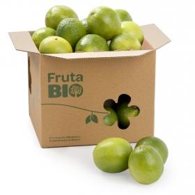 Lima ecológica Carrefour granel 500 g aprox