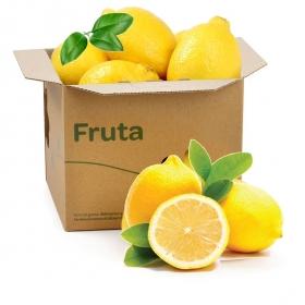 Limón C/Hoja Selecta Carrefour Bandeja 500 grs
