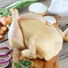 Pollo certificado limpio