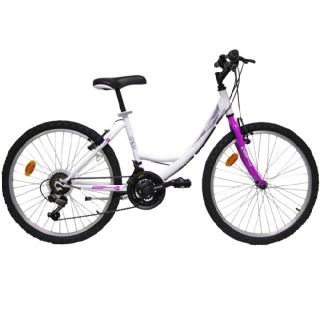 "Mountain Bike First 24"" Chica"
