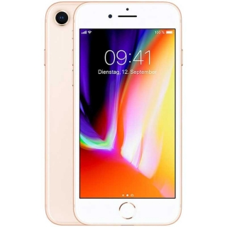 Apple Iphone 8 64gb Gold (solo)