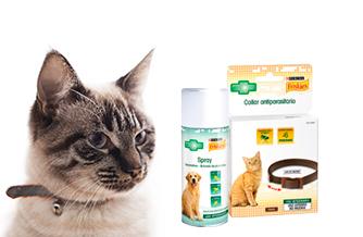 Ir a Antiparasitarios para perros y gatos