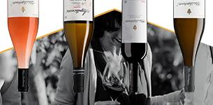 Ir a Azpilicueta - D.O.Ca. Rioja - Hasta un -30% de dto