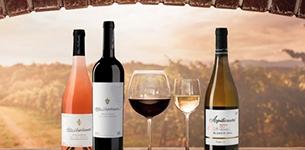 Ir a Azpilicueta - D.O.Ca. Rioja - Hasta 30% dto