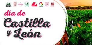Ir a Día de Castilla y León